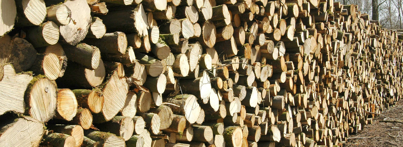 Weeks Forestry, Log stacks