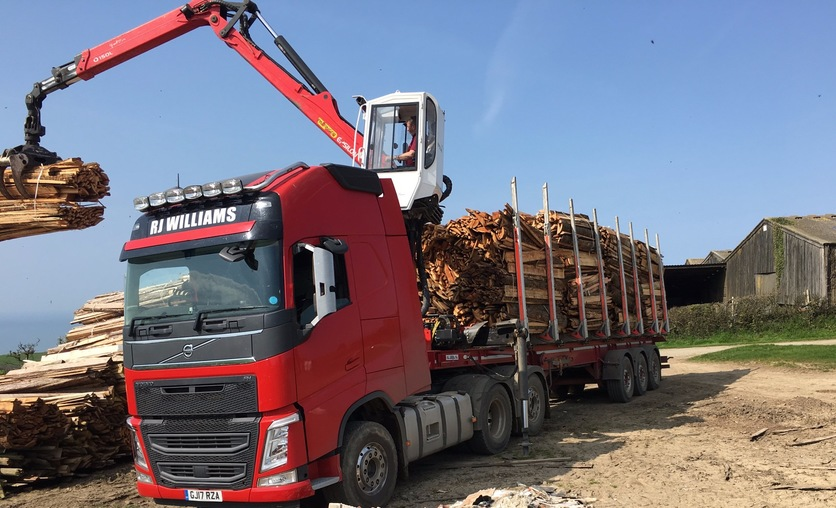 Purchasing Timber in North Devon